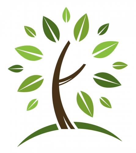 http://www.kansasgreenschools.org/files/u145/tree-branches-and-roots.gif